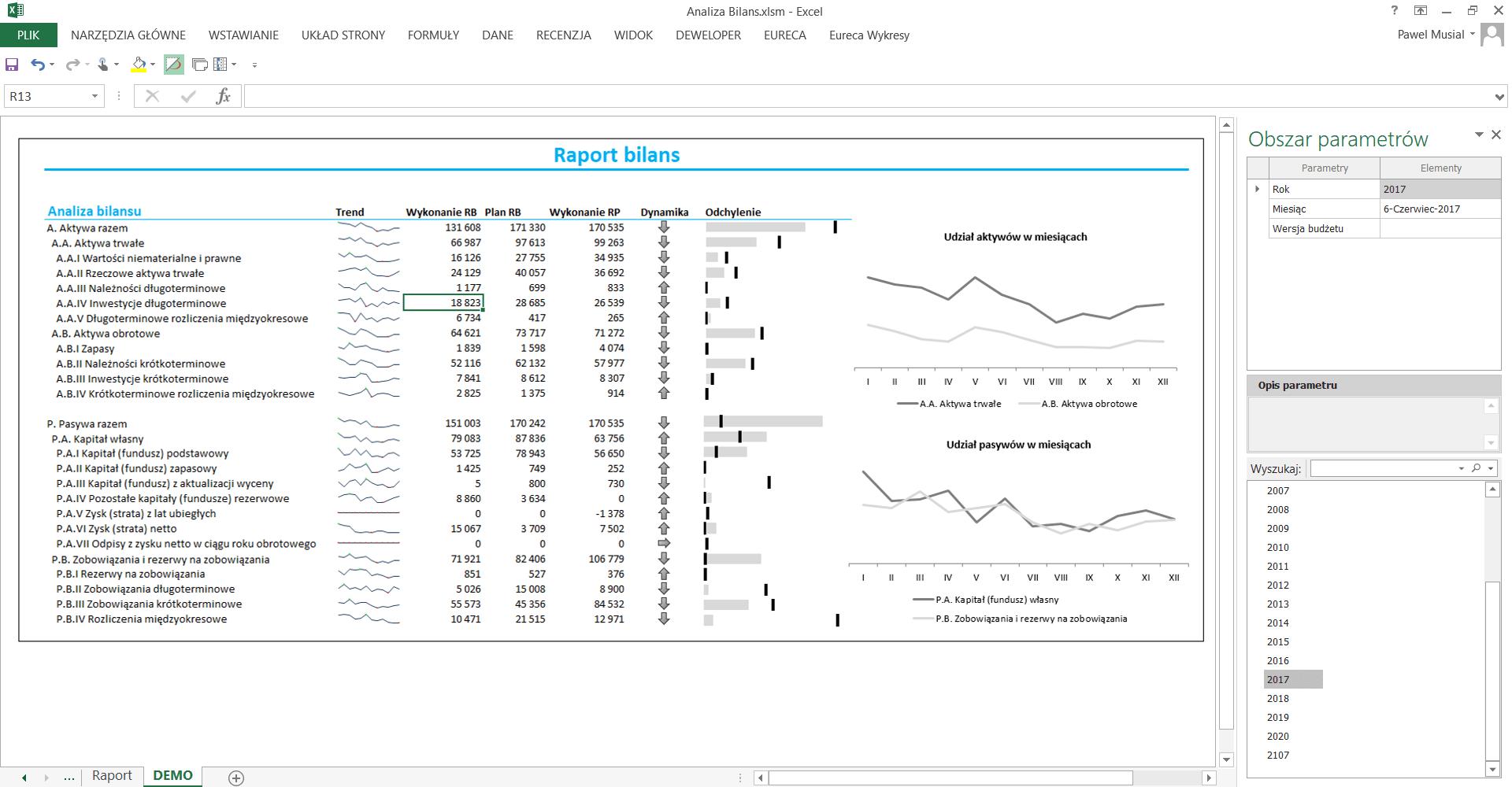 Analiza bilans raport